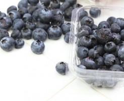 blueberry-calorie