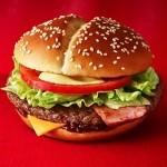 炙り醤油ジャパンのカロリー(1個)|高カロリーでも太らない方法は?